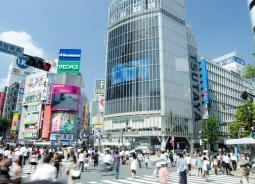 渋谷区ポスティングでは富裕層向けチラシポスティングを意識すると効果が高い